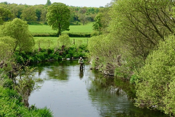 Day Ticket Fishing in the Yorkshire Dales